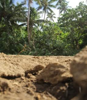 PACC Vanuatu: Vital Roads