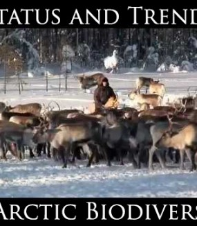 Status and Trends of Arctic Biodiversity
